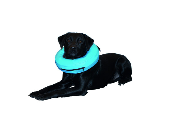Halskragen Inflatable Buster XS 1 Stück