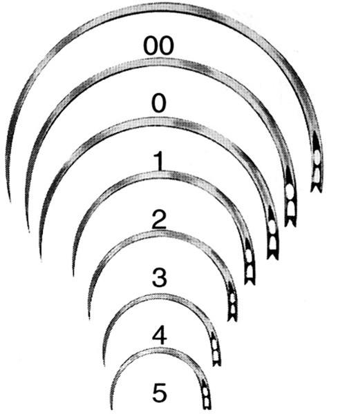 Wundnadeln BL319N 1/2-Kreis Rundkörper 12 Stück